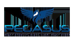PegasusSmallPNG